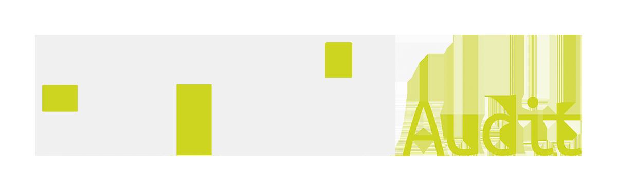 TMS Audit